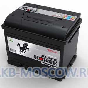 photo-akb-black-horse-55